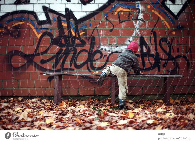 Human being City Leaf Life Wall (building) Graffiti Autumn Emotions Boy (child) Style Wall (barrier) Small Lifestyle Leisure and hobbies Stairs Body
