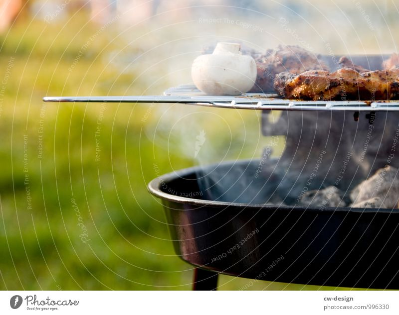 barbecue season Food Meat Mushroom Nutrition Lunch Dinner Picnic Lifestyle Luxury Joy Leisure and hobbies Vacation & Travel Adventure Far-off places Freedom