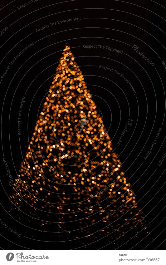 Christmas & Advent Emotions Lighting Style Background picture Lifestyle Feasts & Celebrations Exceptional Moody Glittering Design Illuminate Decoration