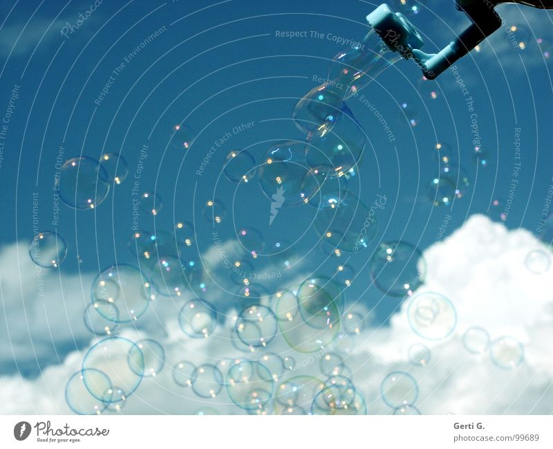 Sky Joy Clouds Air Dream Flying Leisure and hobbies Multiple Happiness Many Soft Delicate Blow Hover Soap bubble Difference