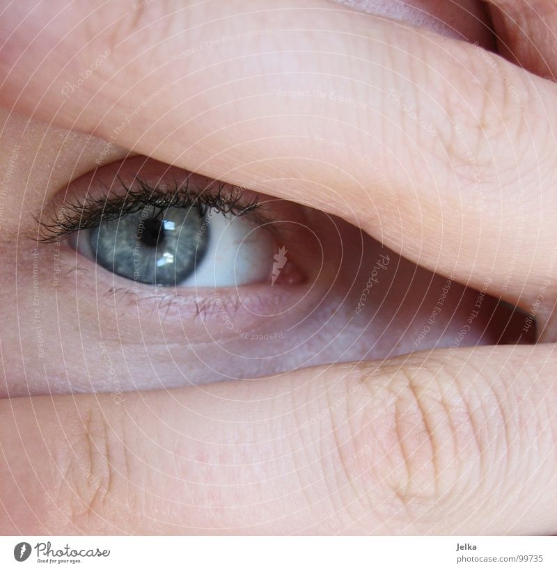 game of hide-and-seek Face Human being Woman Adults Eyes Hand Fingers Blue Eyelash 2 faces eye lashes finfers two Looking