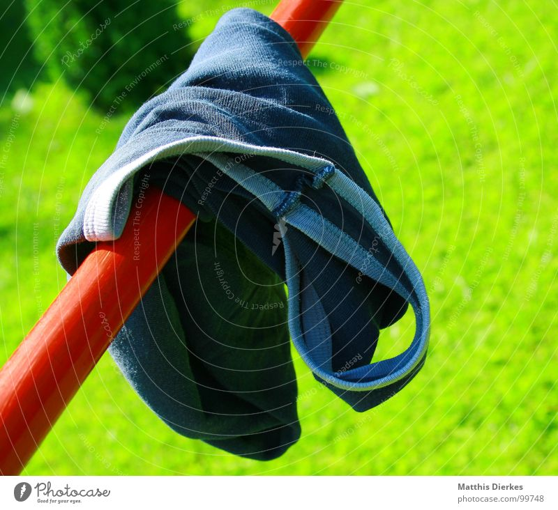 Blue Green Summer Joy Warmth Playing Grass Garden Brown Infancy Clothing Physics Hot Dry Diagonal Society