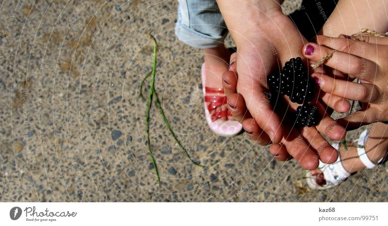 Hand White Summer Black Street Lanes & trails Feet Friendship Footwear Together Field Background picture Fruit 3 Fingers Sweet