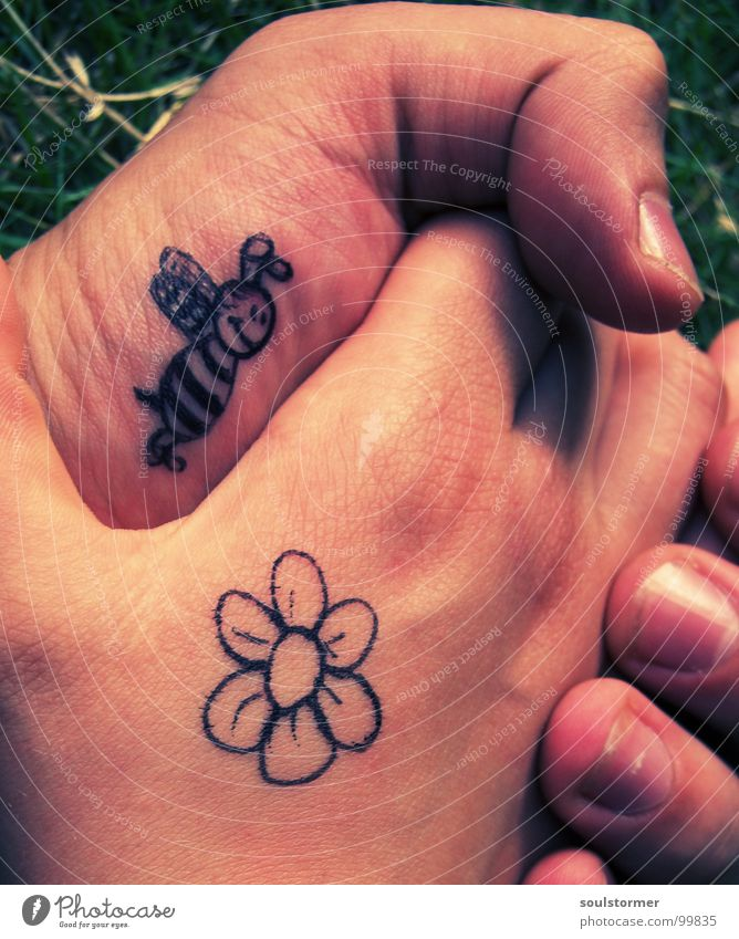 Hand Flower Love Meadow Emotions Grass Blossom Spring Contentment Going Fingers Lawn Touch Pasture Sign Bee