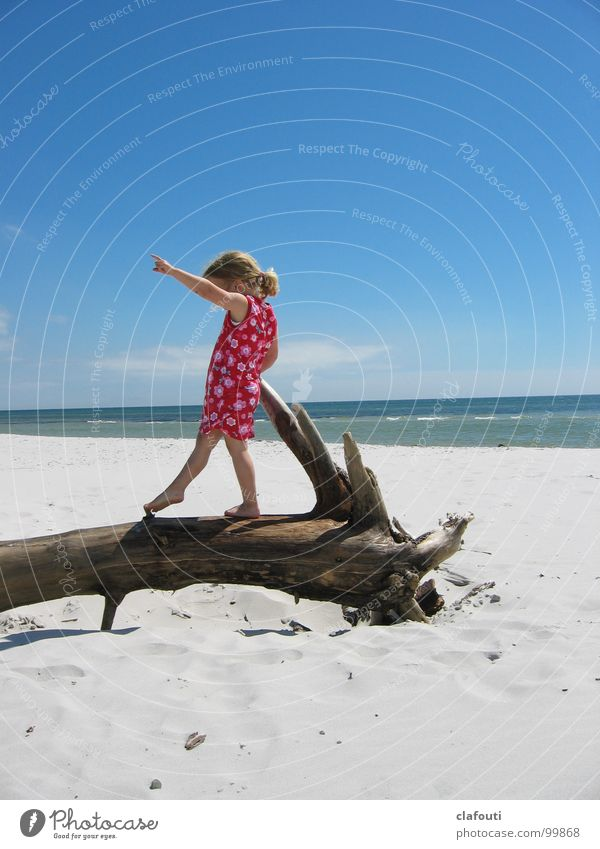 Balance dance Contentment Beach Ocean Dance Child Girl 1 Human being 3 - 8 years Infancy Sand Coast Baltic Sea Dress Playing Blue Pink Joy Happiness Driftwood