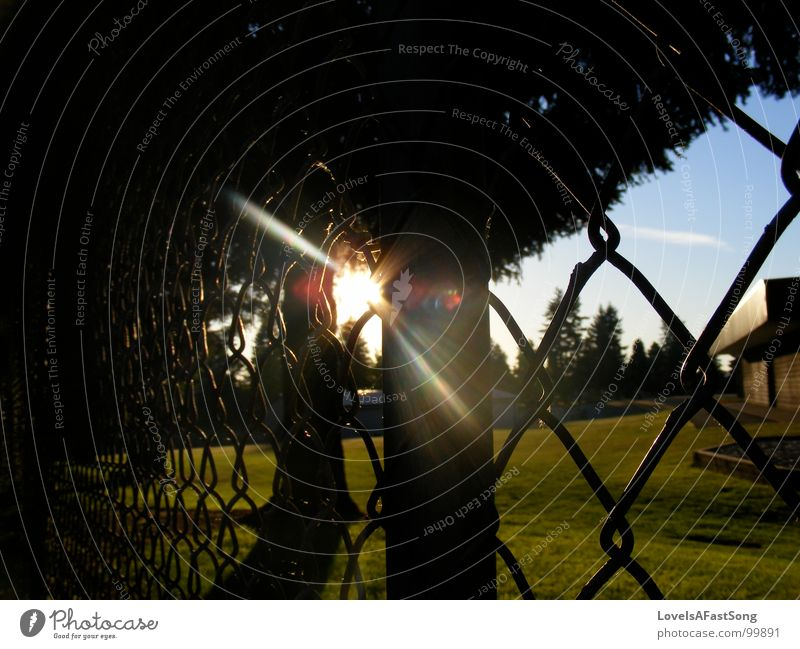 fence Light Summer Sky Middle sun sunlight shine trees glow playground rays sunshine blue Shopping malls