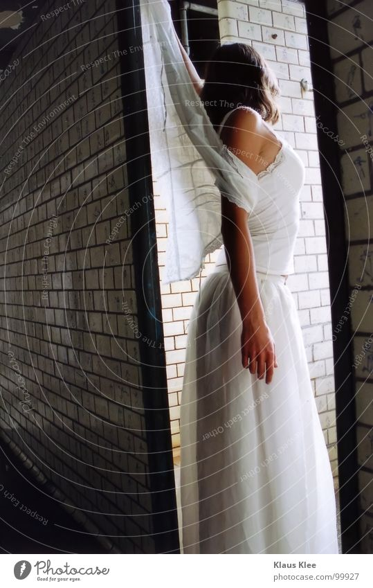 Woman Hand Beautiful Dress Bathroom Trust Stomach Graceful Extract