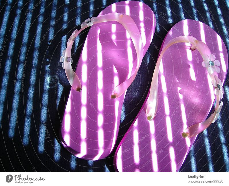 Summer Feeling Pink Beach shoes Flip-flops Stripe Light Vacation & Travel Footwear Sunrise Carpet Leisure and hobbies Shaft of light Joy Shadow Blue