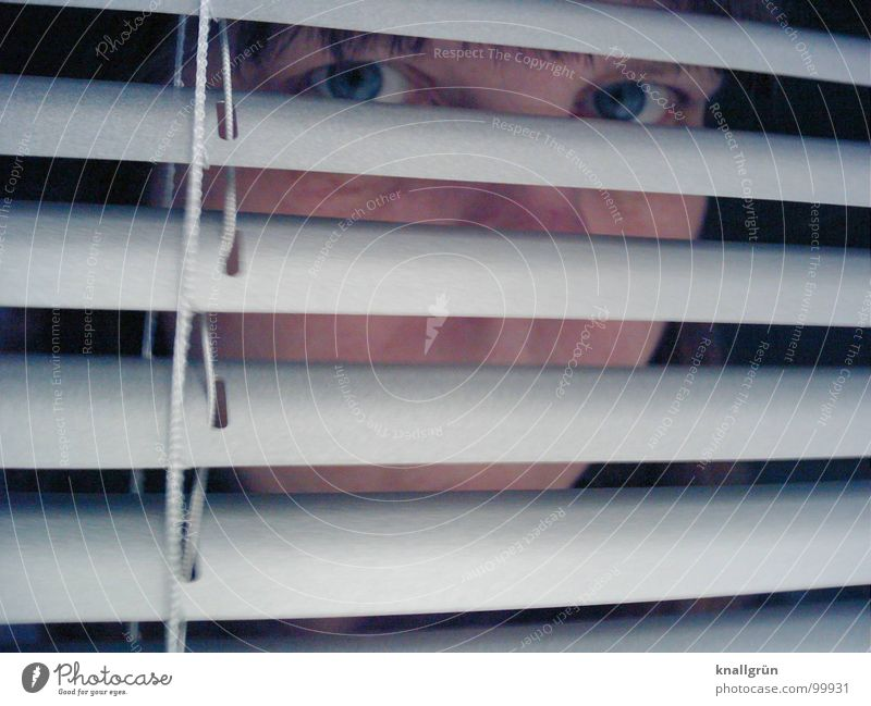 eye view Venetian blinds Gray Stripe Concealed Aluminium Screening Vista Woman Concentrate Face Hide Eyes Looking Head Disk Observe