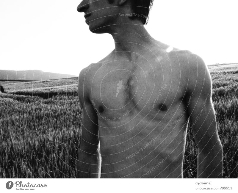 summer breeze I Portrait photograph Man Identity Uniqueness Light Think Dark Silhouette Field Summer Upper body Naked Fellow Black & white photo Human being
