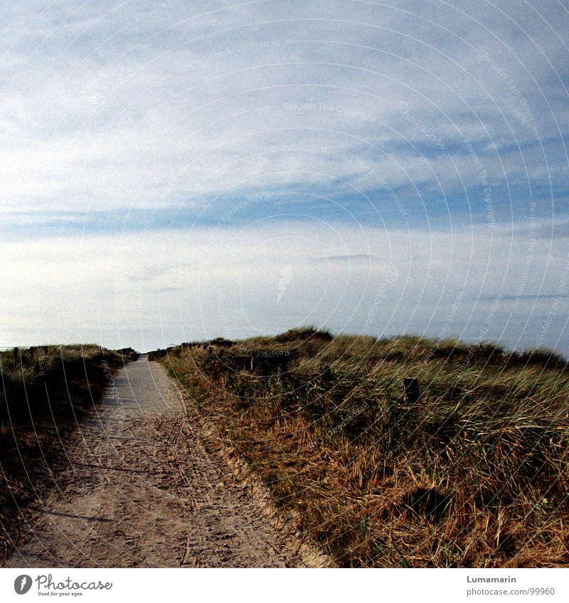 Sky Blue White Green Beautiful Beach Clouds Calm Far-off places Warmth Grass Lanes & trails Coast Sand Horizon Going